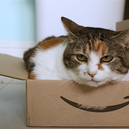 Why Amazon FBA is Essential for Selling Products on Amazon