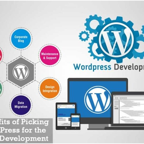 Benefits of Picking WordPress for the Web Development